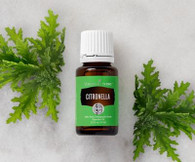 Citronella Essential Oil 15 ml - Young Living