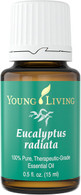 Eucalyptus Radiata Essential Oil 15 ml - Young Living