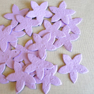 Lavender Star Shaped Wildflower Seeded Plantable Recycled Paper