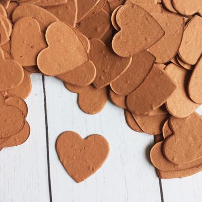 Heart Shaped Plantable Confetti - Burnt Orange
