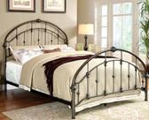 Furniture of America CM7702 Bronze Metal Platform Bed