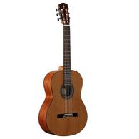 Alvarez AC65 Artist Classical Acoustic Guitar