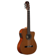 Alvarez AC65CE Artist Classical Acoustic/Electric Guitar
