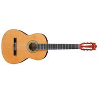 Ibanez GA3 Acoustic Guitar