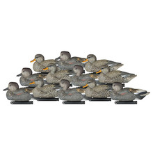 Dakota Gadwall - 6pk - 17500 - 723175895478