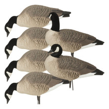 Avery GHG Hunter Series Canada Full Bodies - Harvester 6pk - 71597 - 700905715978