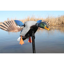 Mojo Elite Series Mini Mallard Drake Decoy - 816740003924