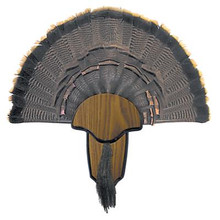 Hunter Specialty Turkey Tail & Beard Mounting Kit - 021291008490