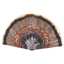 Flambeau Replacement Turkey Fan - 071617043513