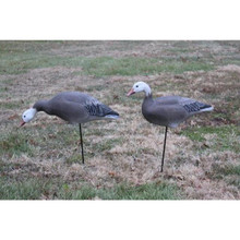 Big Foot Blue Goose One-Piece Full Body Decoy - 6pk -