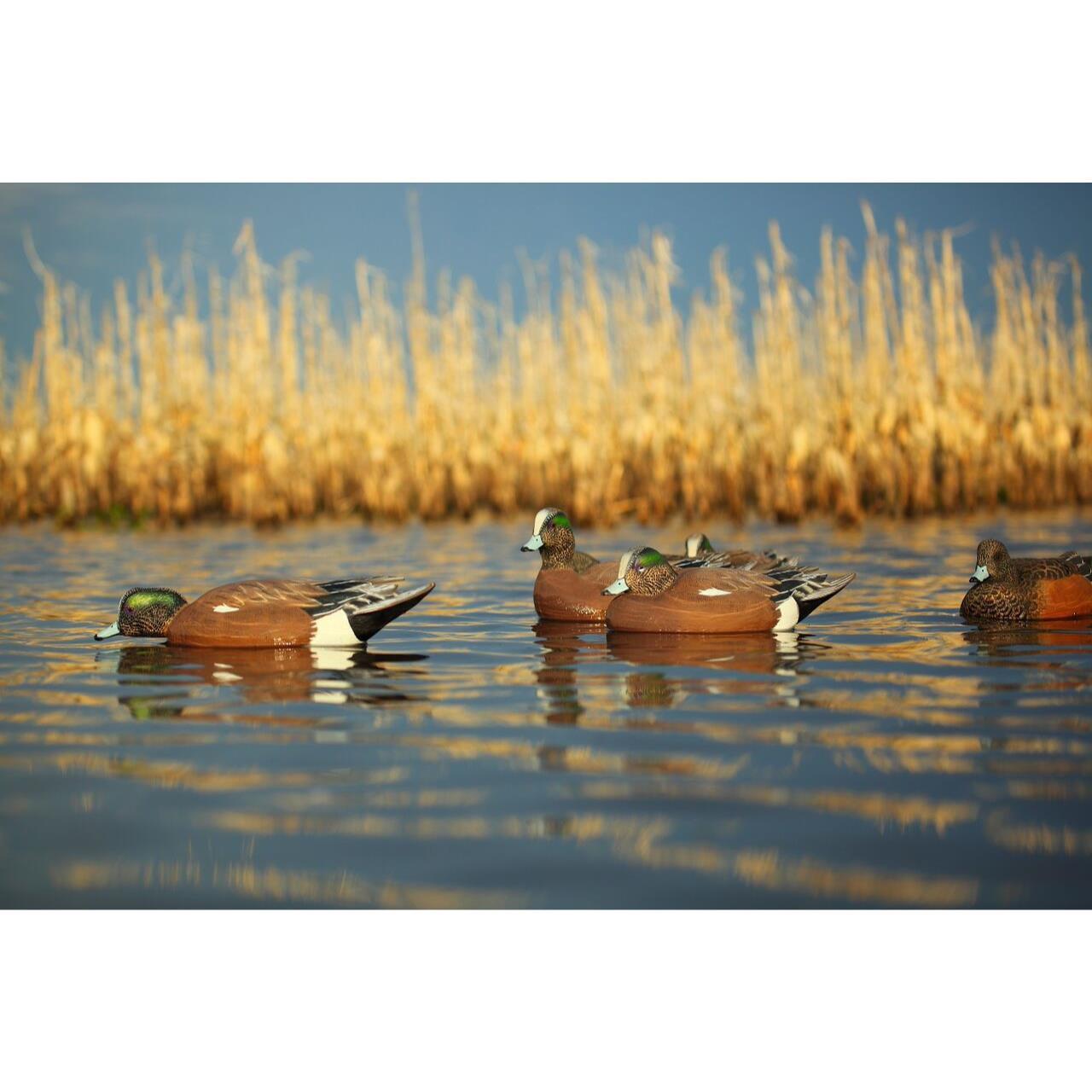 Avery GHG Pro-Grade Wigeon Floaters - 6pk - 73143 - 700905731435