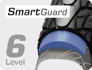 smartguard-6.jpg