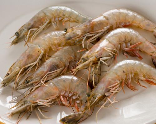 Louisiana Jumbo Shrimp Fresh - Bing images