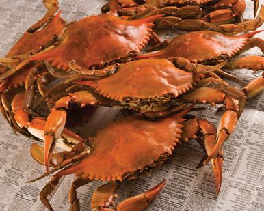 Lousiana Boiled Crabs