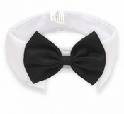 Black Bow Tie White Dog Collar