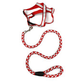 Red Reflective Dog Harness & Lead Set