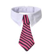 Pink Black Striped Tie Dog Shirt Collar