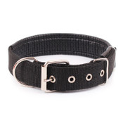 Black Nylon Buckle Dog Collar