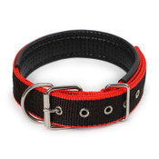 Black & Red Nylon Buckle Dog Collar