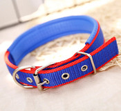 Blue & Red Nylon Buckle Dog Collar