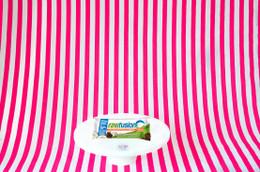 SAN Raw Fusion Protein Bar - Chocolate Coconut Chunk #NEW #FEAT