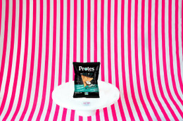 Protes Protein Chips  28g - Toasted Coconut #NEW #FEAT
