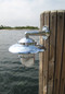 chrome nautical dock light