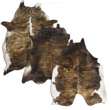 Full Brindle Argentina Cowhide 5064 - Western Decor - Wall Hanging