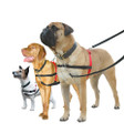 Halti Dog Harness - Medium