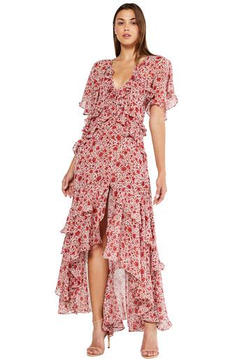 MISA Los Angeles Katarina Dress Rust Animal Floral