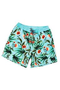 Agua Bendita Boys Swim Shorts Nick Pistacchio