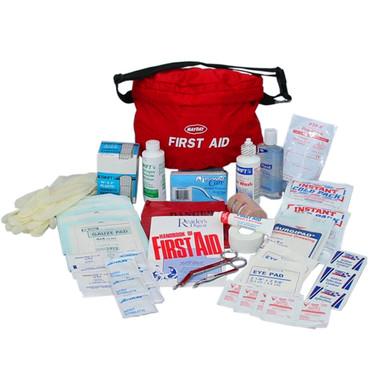скачать торрент First Aid Kit img-1
