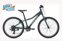Giant XtC Jr 24 Lite | Trekking Green