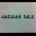 Jaguar 3.8S 1964