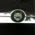 Jaguar Trunk Trim Xj8 98-03