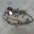 Jaguar Engine Harness Xj8, Vdp 98
