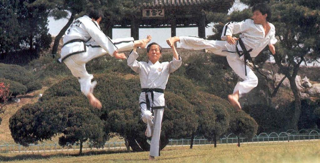The Kicking Art of Taekwondo