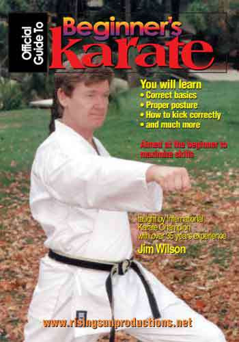Beginners Guide To Karate(DVD Download)