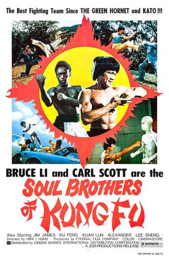 Bruce Li Soul Brothers of Kung Fu (Download)