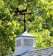 Horse and Buggy Weathervane for Cornerstone Shed Kit | EZ Fit Shed in Amish Country, Winesburg, Ohio