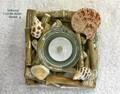 Driftwood - Single Candle Holder with Shells - Medium 14cm