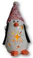Penguin Light - Add-on