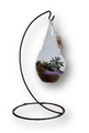 This tabletop, hanging terrarium is filled with a beautiful succulent and makes a great gift no matter what the occasion.