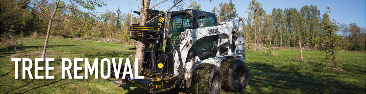Shop our wide selection of skid steer muclhers, mowers and skid steer tree shear attachments online.