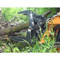 FFC Commercial Duty Skid Steer Brush Grapple Attachment on Jobsite