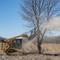 Bradco Skid Steer Disc Mulcher felling a tree