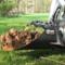 "FFC 42"" Skid Steer Tree Scoop Attachment Dirt Scooping"