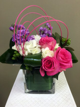 Pink Roses, Hydrangeas, Hypericum Berries, Stock, and fun loops!
