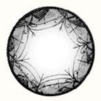 Geo Xtra Ribbon WTB95 circle lens design detail.