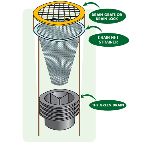 Floor Drain Strainer and Grate above green drain